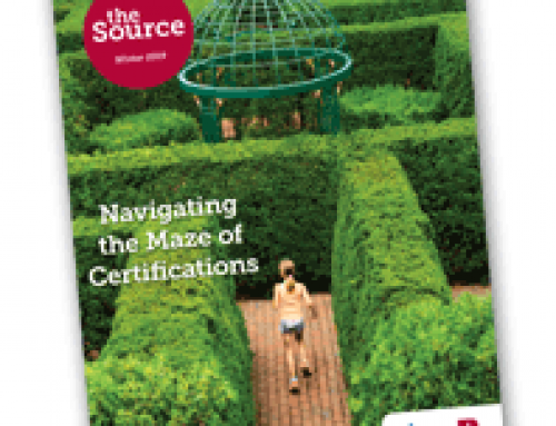 Navigating the Maze of Certifications
